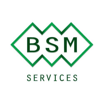BSM Services (1998) Ltd. logo